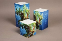 5-Sided Riser Boxes; Acrylic Fabricated w/Mitered Joints; Digital Printing on Vinyl Laminate